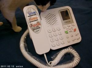 Internetes telefon